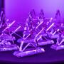Nagrody Employer Branding Stars 2019